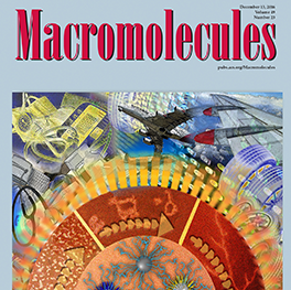 Cover art for Macromolecules Journal