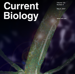 Hydra Current Biology Journal