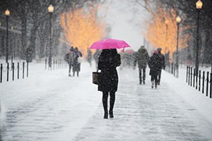 snowy day woman holding pink umbrella walks across college walk