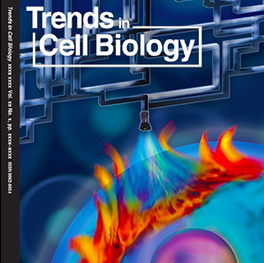 Cover of Trends in Cell Biology publication.  Multi colored image of earth and natural gas